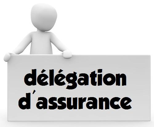 assurance delegation
